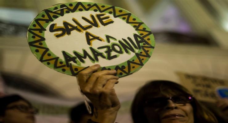 проблема вирубки лісів в Бразилії