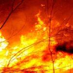 Надзвичайний стан на Сардинії через сильні пожежі