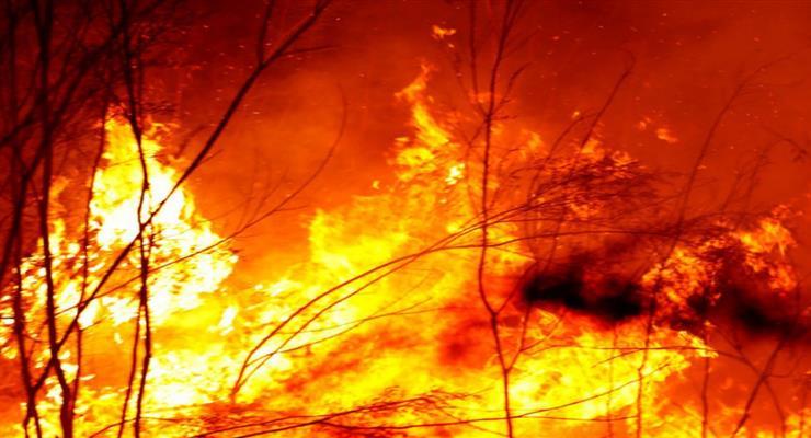 пожежі в Сардинії