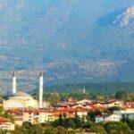 2105 лісових пожеж вирувало в Туреччині цього року