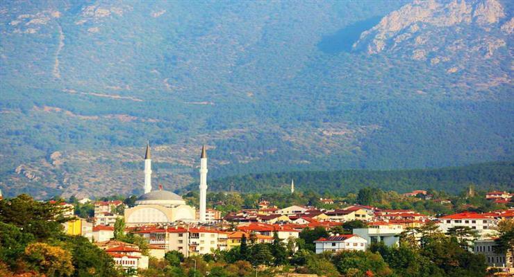 2105 лісових пожеж в Туреччині цього року