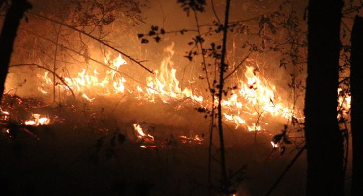 тысячи людей были эвакуированы из-за огромного лесного пожара в Испании