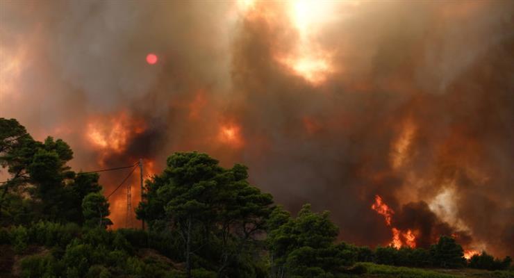 На півдні Туреччини знову спалахнули пожежі